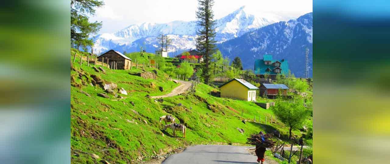 Best things to do in Manali - Gulaba Village