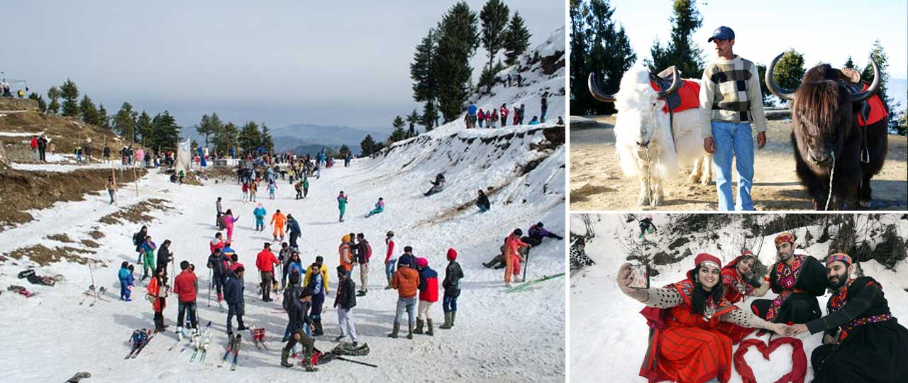 Best places in Shimla for honeymoon