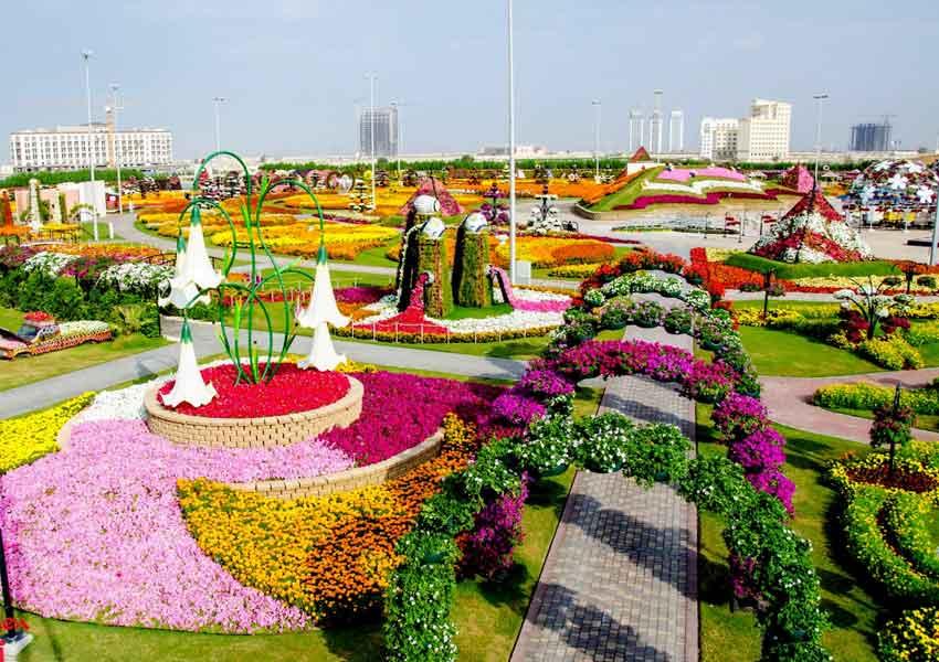 Miracle garden of Dubai