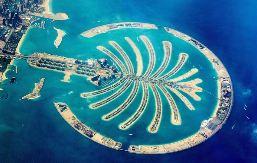 Island Shaped Like a Palm Tree