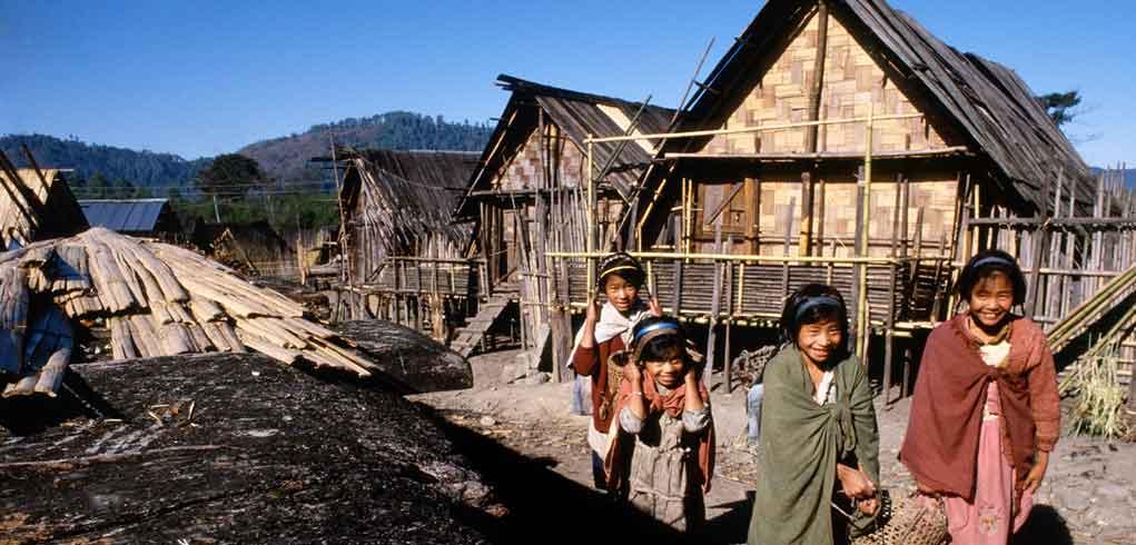 Ziro Village