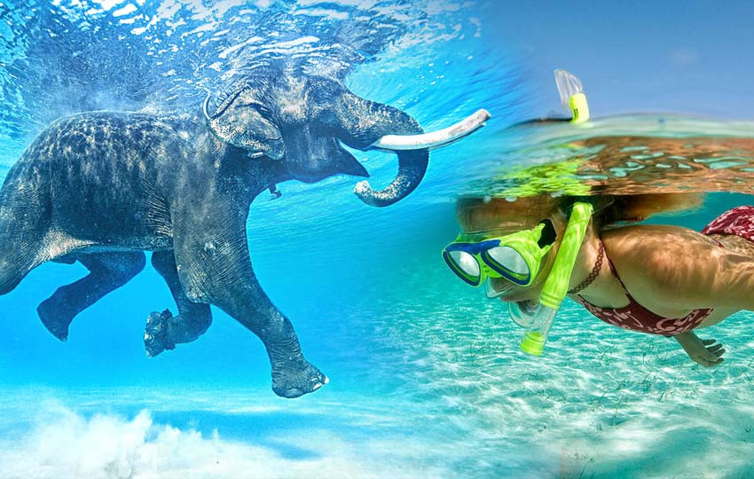 Andaman tour packages - Elephant Beach