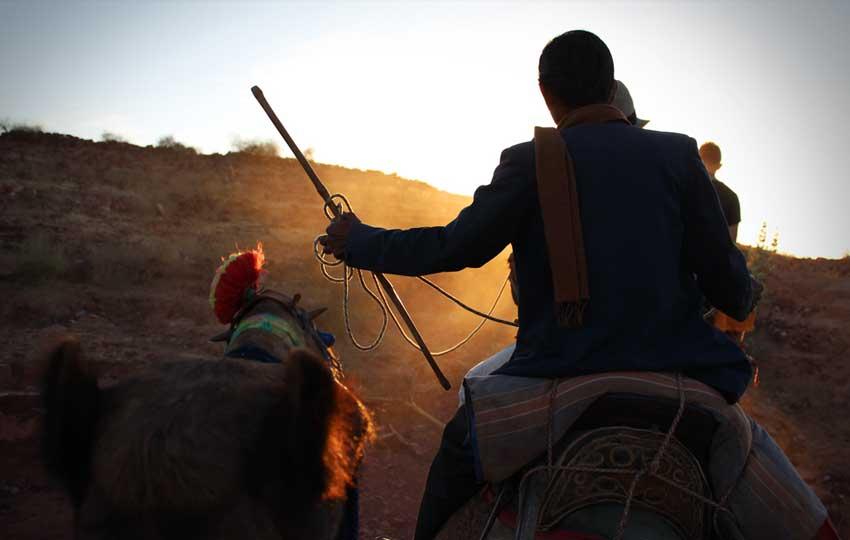 Camel Trekking in Rajasthan