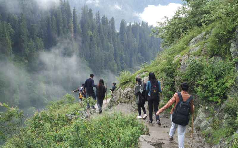 people trekking through the mountain edge along with trees and fog with the help of rode to the top in Kasol.